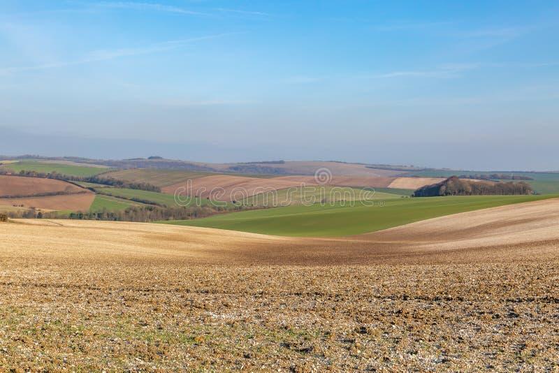 Sussex patchworklandskap royaltyfria bilder