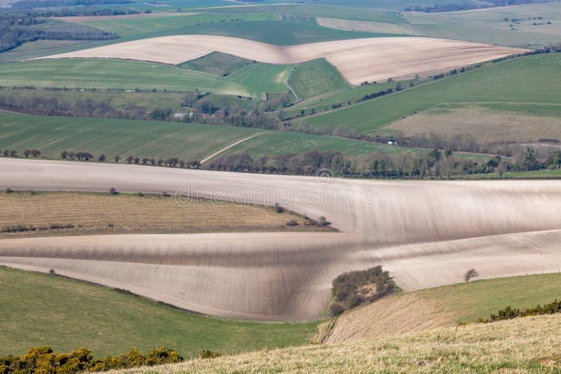 Sussex patchworklandskap fotografering för bildbyråer