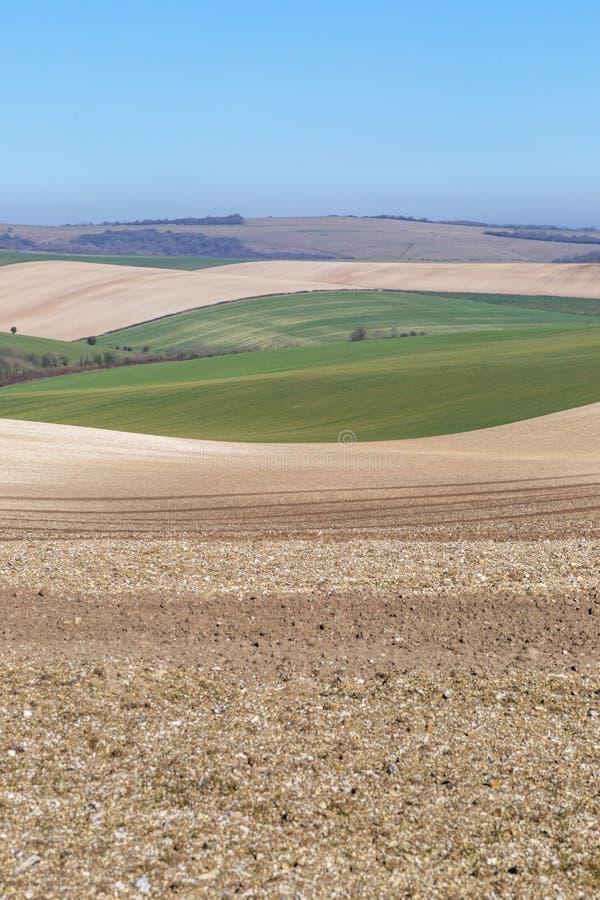 Sussex patchworklandskap royaltyfri fotografi