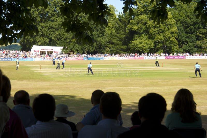 Download Sussex V Surrey T20 Cricket At Arundel Editorial Stock Photo - Image: 15125958