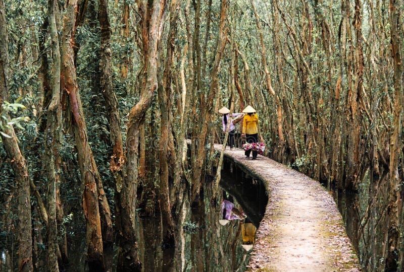 Sussistenza in Moc Hoa immagini stock libere da diritti
