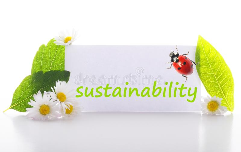 Sustainability royalty free stock photos