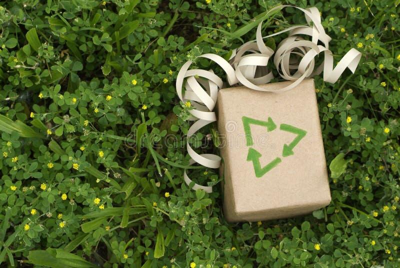 Sustainable Eco green gift stock photo