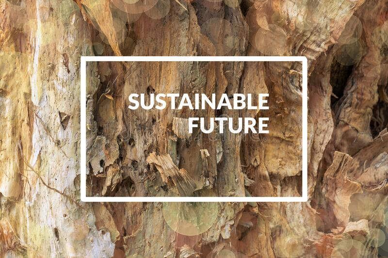 Sustainable Future poster design with old tree bark texture royalty free stock photo