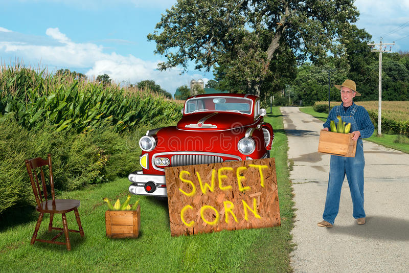 Sustainable Living, Nostalgic Farmer Selling Sweet Corn. A farmer from a nostalgic era and a vintage truck is selling sweet corn by the side of the road royalty free stock photo