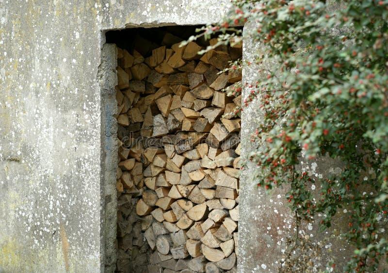 Sustentabilidade e supervisão de recursos naturais fotos de stock
