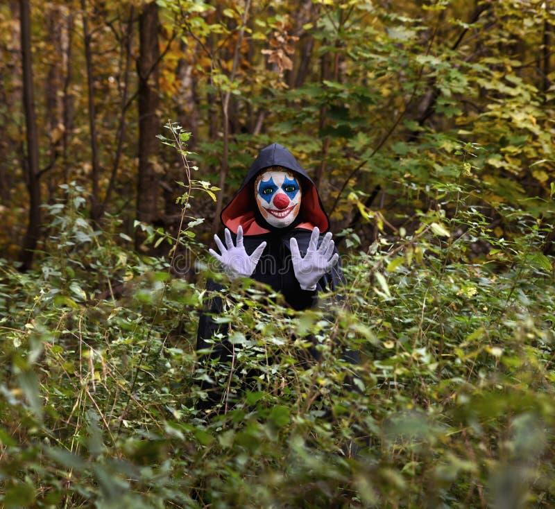Sustos engraçados do palhaço na floresta imagens de stock