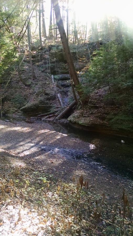 Suszący W górę rzeki obraz stock