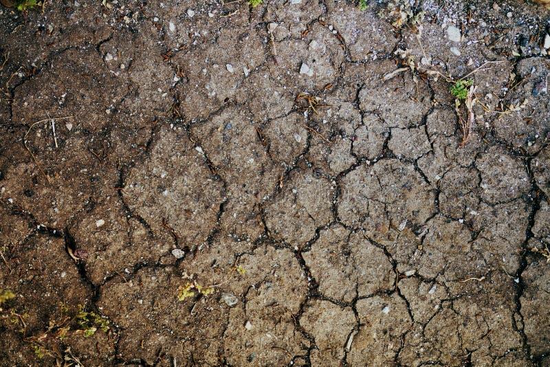 Suszę pękał ziemię w gorącym lecie zdjęcia stock