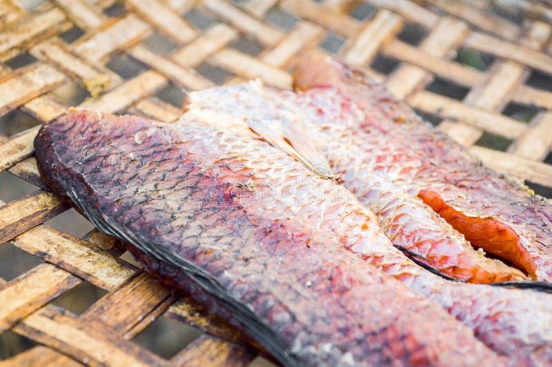 Suszę paskował snakehead rybiego surowego jedzenie zdjęcie royalty free