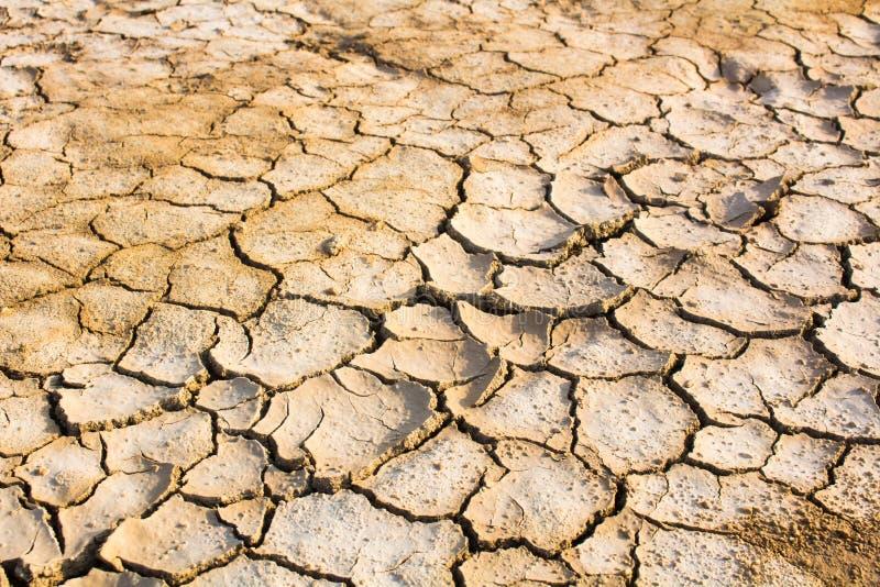 Susza, globalne ocieplenie, środowisko zmienia nagle fotografia stock