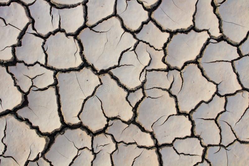 Susza, globalne ocieplenie, ?rodowisko zmienia nagle zdjęcia stock