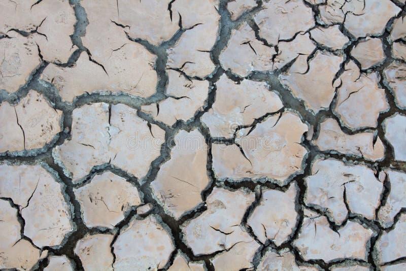 Susza, globalne ocieplenie, ?rodowisko zmienia nagle obrazy royalty free