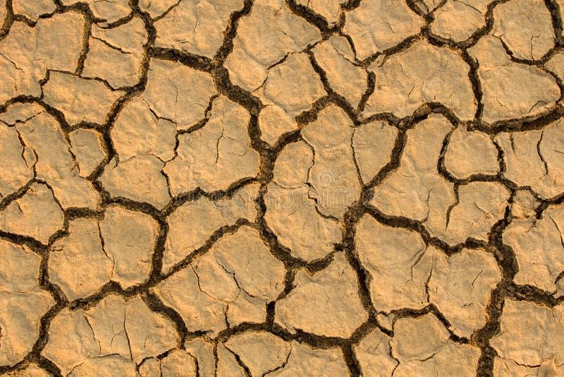 Susza, globalny nagrzanie, środowisko zmienia nagle obrazy stock
