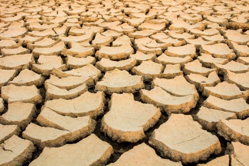 Susza, globalny nagrzanie, środowisko zmienia nagle zdjęcie stock