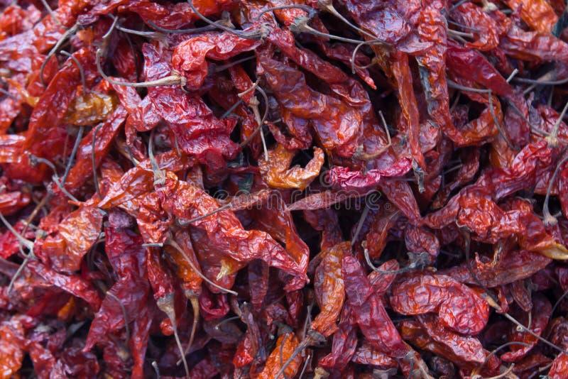 Suszarniczy gorący chili pieprze przy Chichicastenango rynkiem obraz stock