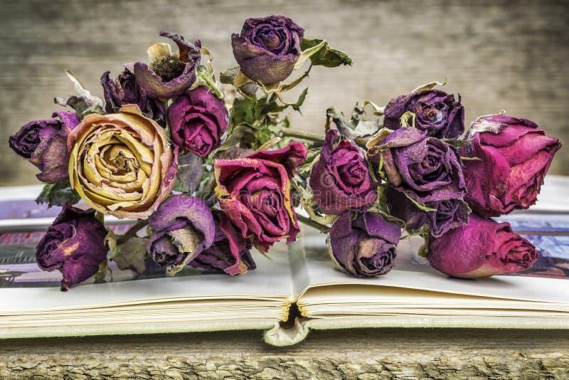 suszone bukiet róż obrazy stock