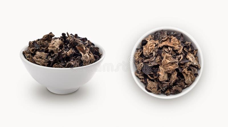 suszy czarnej fugus pieczarki w pucharze zdjęcia stock