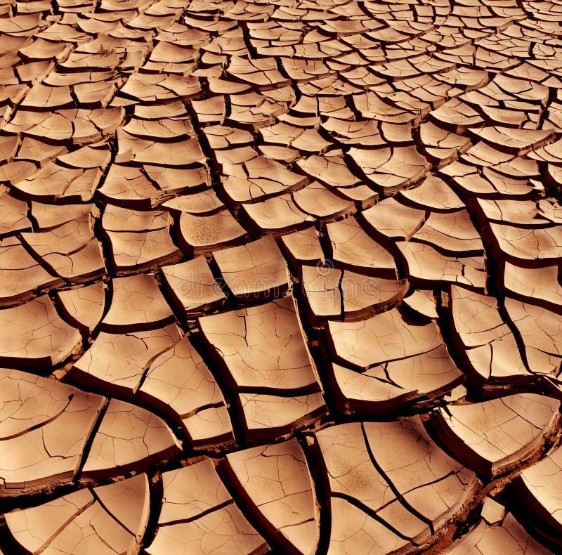 Suszy krakingową ziemię - Pustynia zdjęcie royalty free