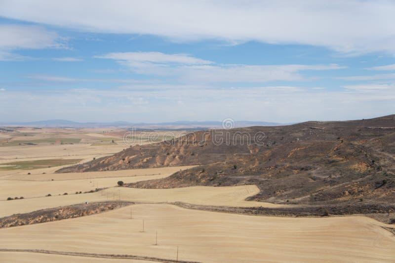 Suszy pole w Hiszpańskiej wiosce, sucha trawa, kolor żółty, niebieskie niebo z białymi chmurami zdjęcie royalty free