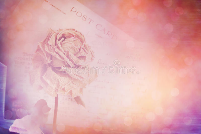 Suszy różaną i starą pocztówkę Obiektywu raca i bokeh skutek, rocznik obrazy stock