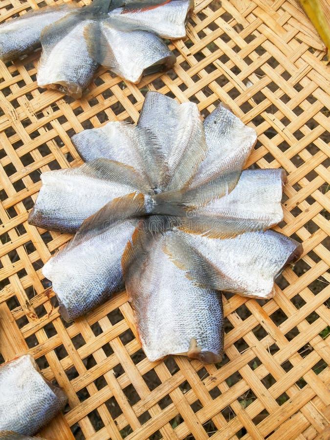 Suszy rybiego surowego jedzenie na bambusowej podłoga obraz stock