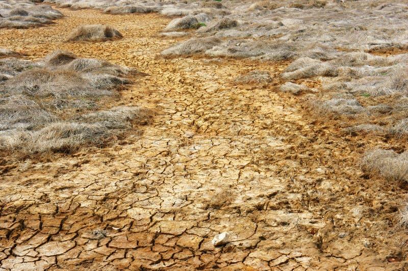 Suszy ziemia, zmiana klimatu, gorący lato fotografia stock