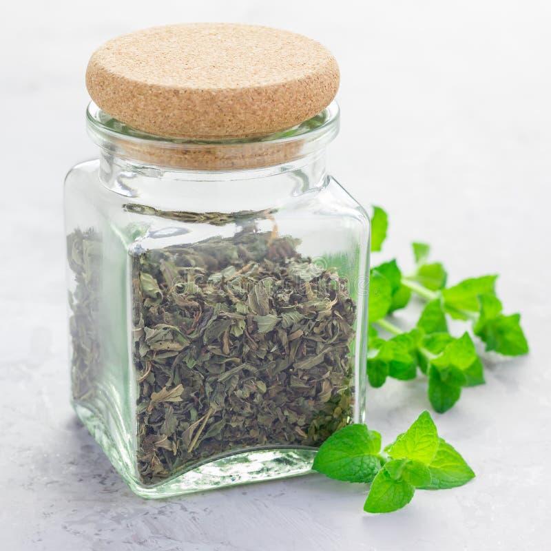 Suszy ziołowej nowej herbaty w szklanym słoju z świeżą miętówką na tle, kwadratowy format obraz royalty free
