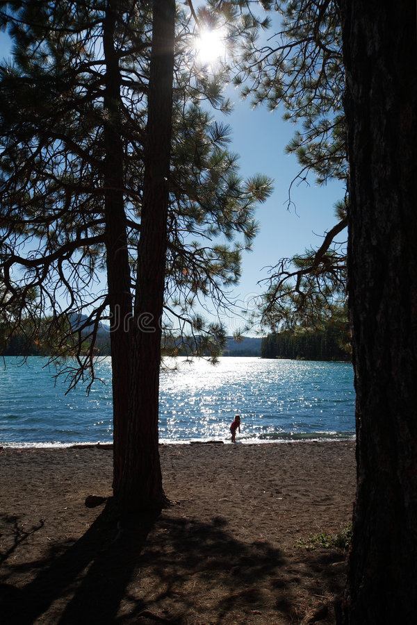 Suttle Lake. A child plays in the gentle waves of a mountain lake stock image