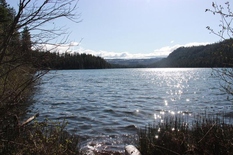 Suttle Lake stock photography