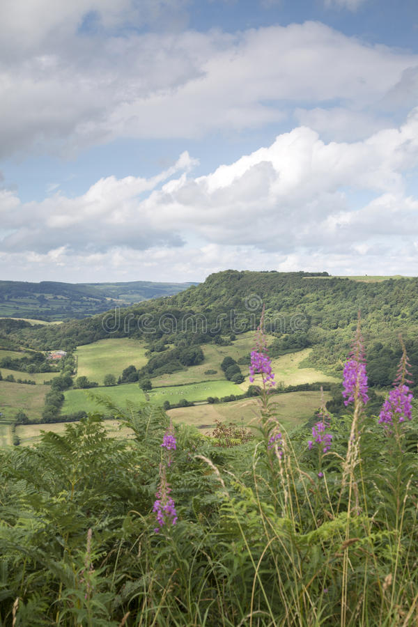 Sutton Bank Landscape, York del nord attracca fotografie stock libere da diritti