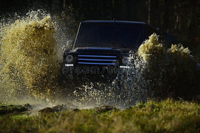 SUV或越野汽车在用草横穿水坑盖的道路与肮脏的水飞溅 极端、挑战和4x4 库存照片