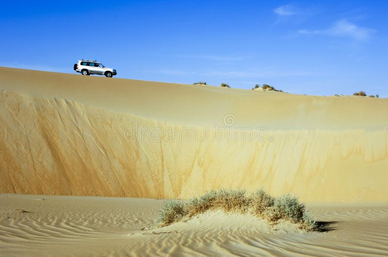 An SUV car on top of a sand dune in Rub Al Khali desert royalty free stock photos