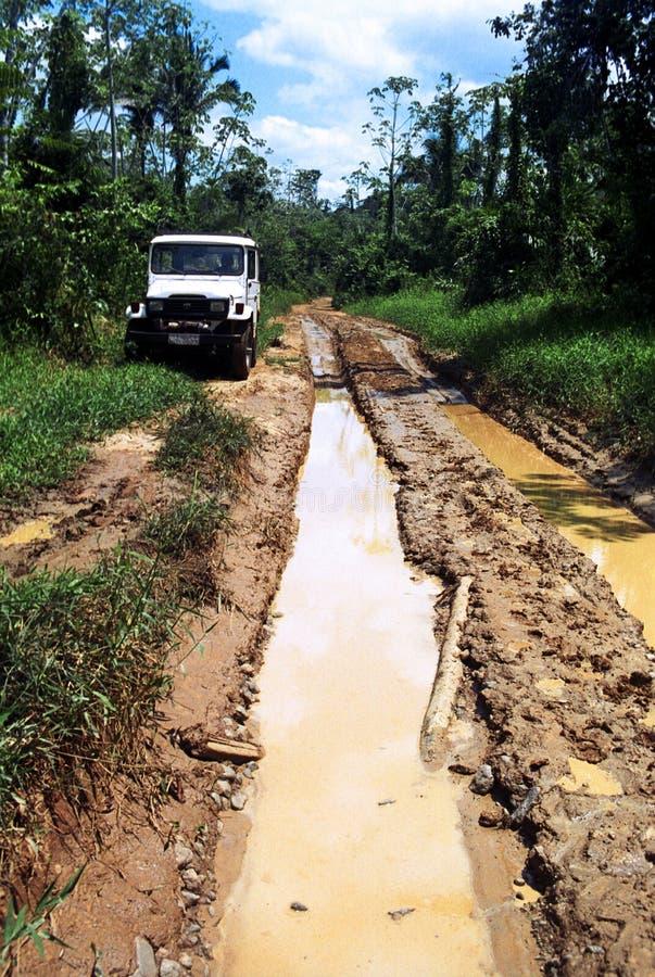 SUV i en lerig trail i den amazon skogen royaltyfri foto