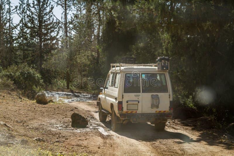 SUV monta en la carretera nacional en el bosque, Israel imagen de archivo