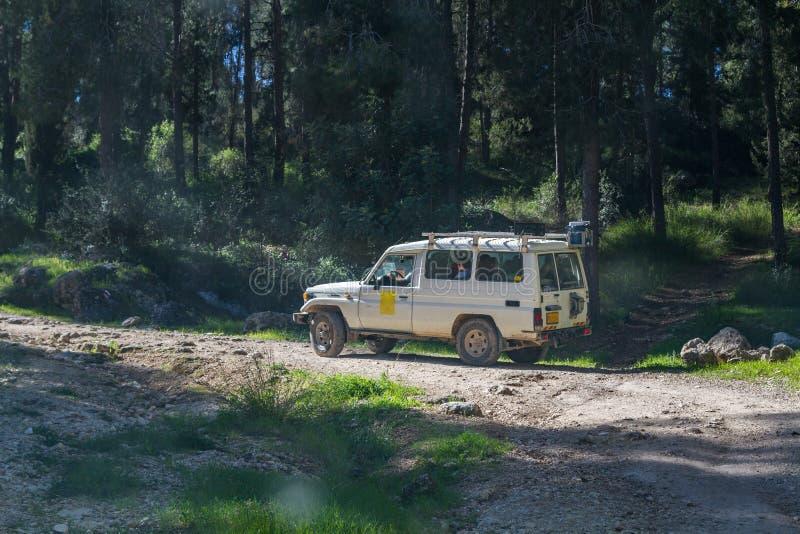 SUV monta en la carretera nacional en el bosque, Israel foto de archivo libre de regalías