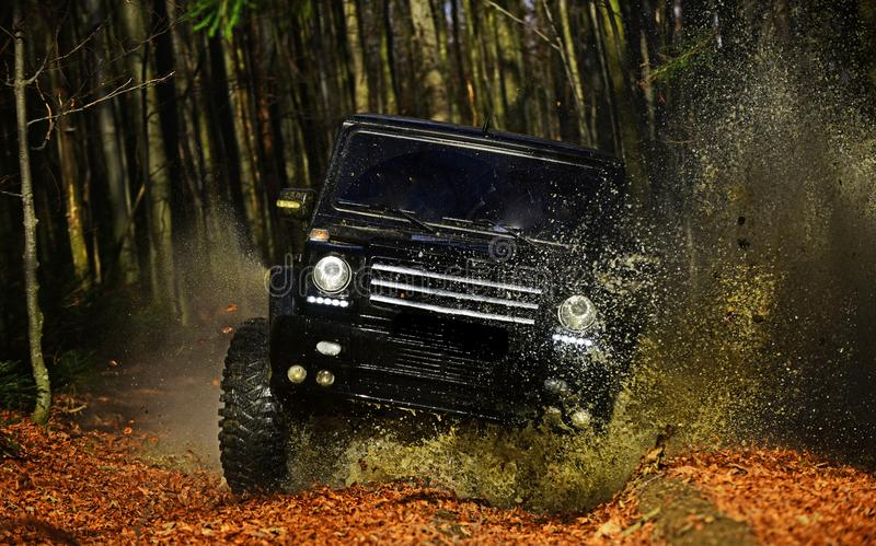 SUV or offroad car on path covered with leaves crossing puddle with dirty water splash. Offroad race on fall nature. Background. Car racing in autumn forest stock image