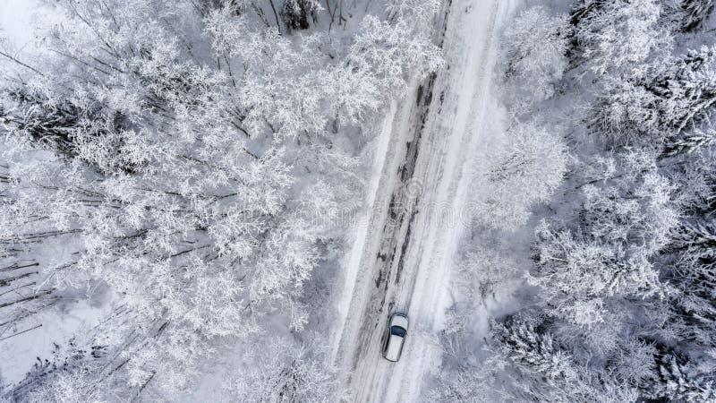 Suv que conduz na floresta sempre-verde nevado branca na estrada asfaltada do slipery Vista aérea do zangão foto de stock royalty free