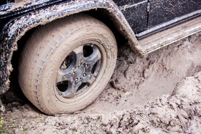 SUV s'est coincé dans la boue dans la forêt, tous terrains image stock
