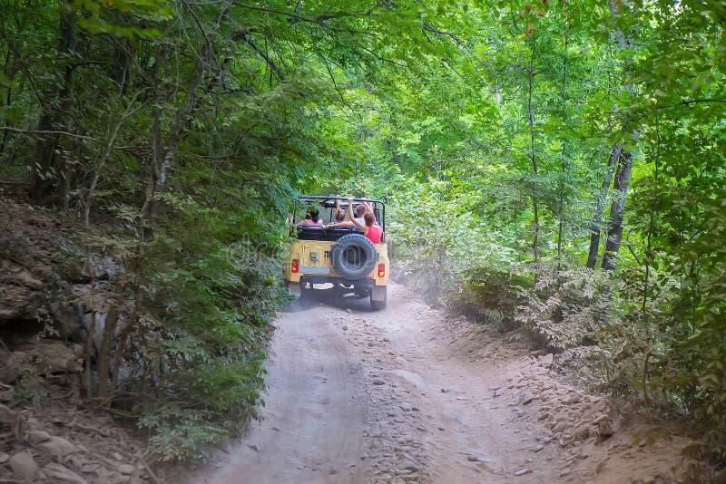SUV vai na madeira na estrada de terra imagens de stock