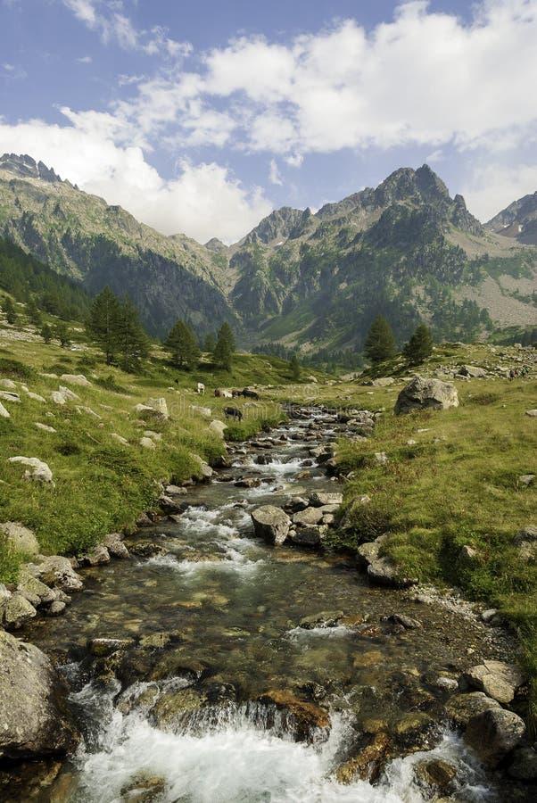 Suveräna bergsdalen i Piemonte royaltyfri fotografi