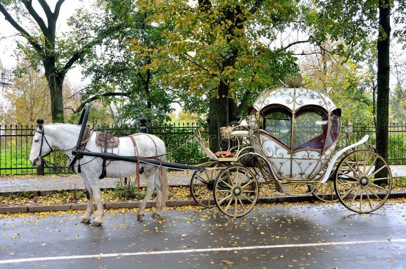 Suzdal, Rússia, setembro, 22, 2013 Cena do russo: ninguém, transporte tirado por um cavalo branco na rua do outono fotografia de stock royalty free