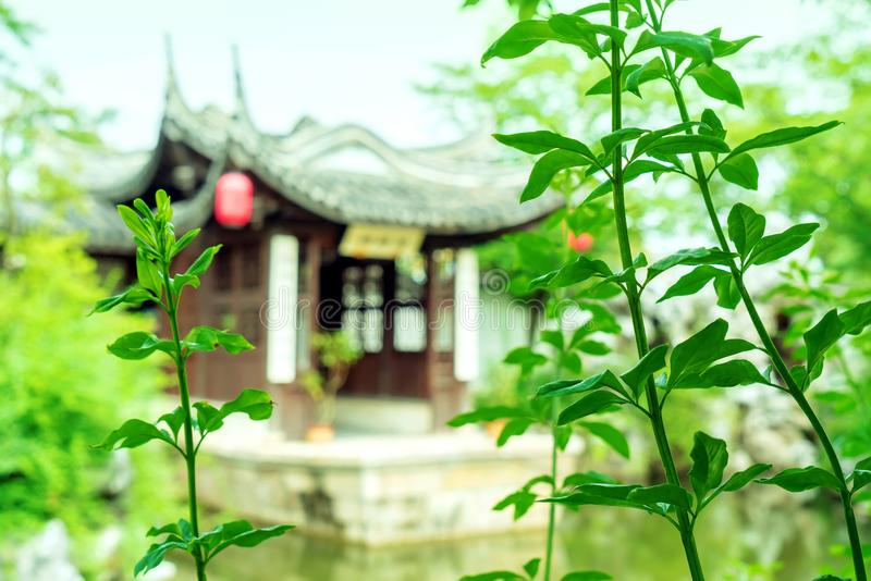 suzhou κήπων της Κίνας στοκ εικόνα
