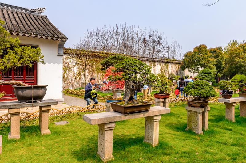 The Humble Administrator's Garden. SUZHOU, CHINA - APR 1, 2016: The Humble Administrator's Garden, a Chinese garden in Suzhou, a UNESCO World Heritage Site stock photography