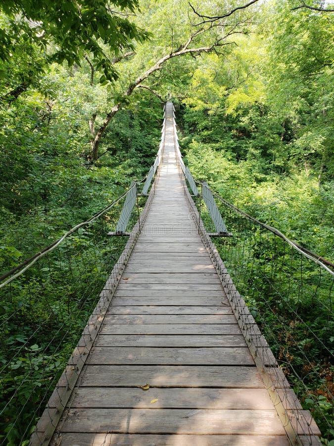 Svängande bro royaltyfri fotografi