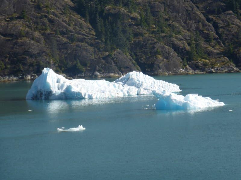 Sväva isbergen från glaciären i Alaska royaltyfri fotografi