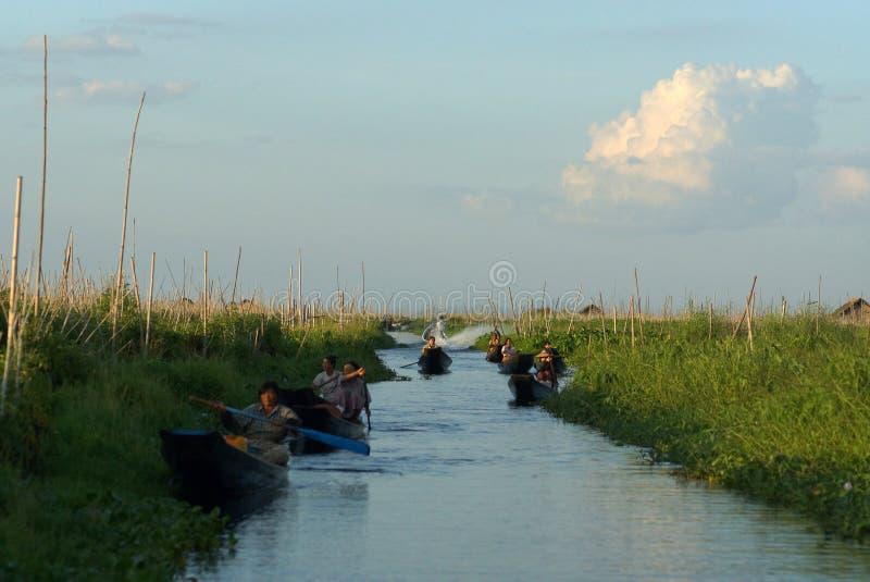 Sväva trädgården på Inle sjön i Burma, Asien royaltyfri fotografi