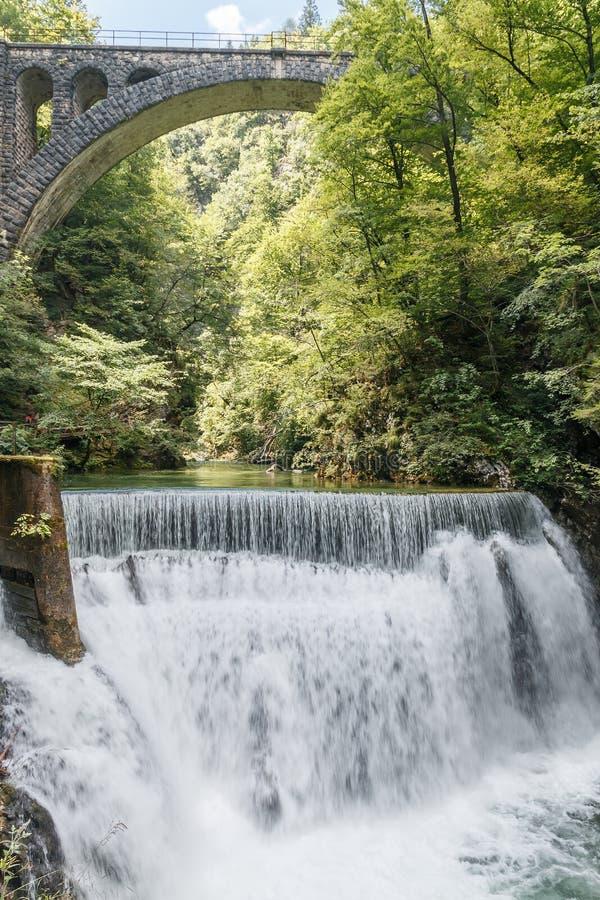 Sväva vattenfallet i mitt av skogen royaltyfria bilder