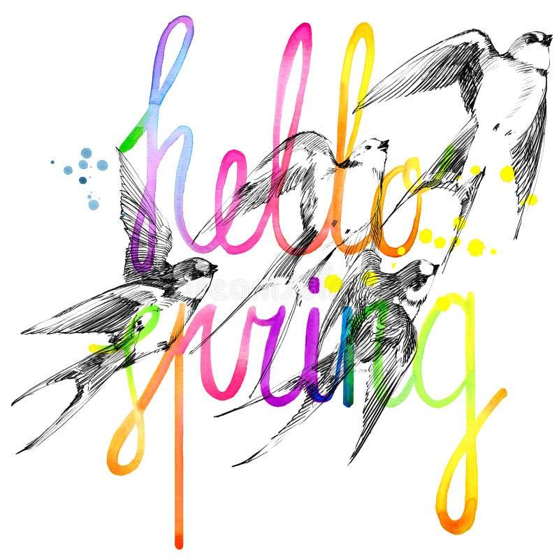 svala Svalablyertspennan skissar snabbt flyg Hälsningar fjädrar stock illustrationer
