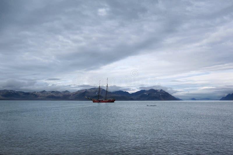 Svalbard kust arkivbilder